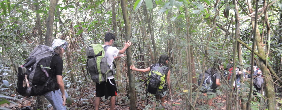Jungle Trekking In Borneo